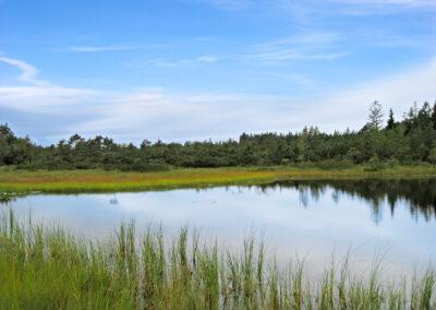 Der Grundlose See | Chiemsee Wg
